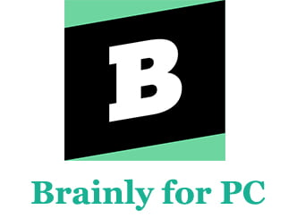 Brainly for PC